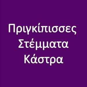 ΠΡΙΓΚΙΠΙΣΣΕΣ - ΣΤΕΜΜΑΤΑ - ΚΑΣΤΡΑ